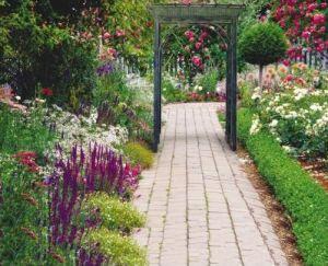 Metal Pergola Along a Garden Walkway